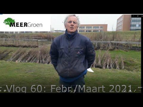 Vlog 60: Februari/maart 2021