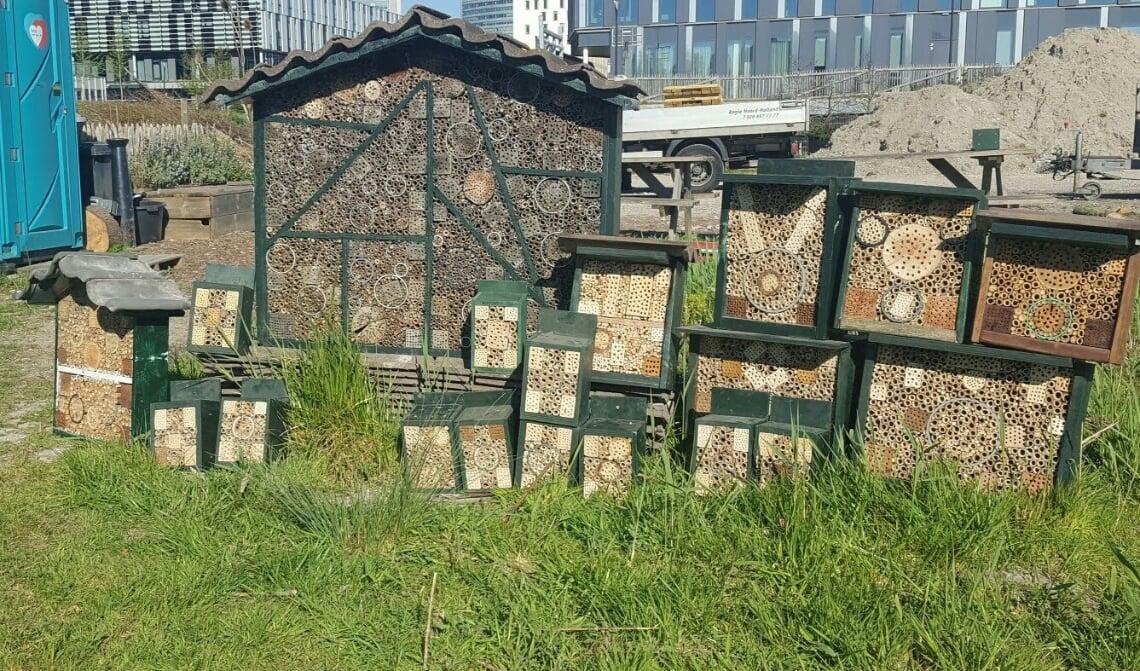 HC Nieuws: 'Rem op meer honingbijen'